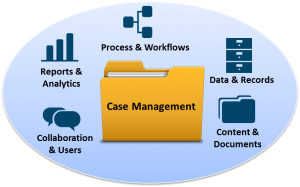 dynamic case management image
